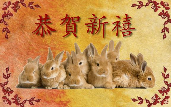 year-rabbit-1